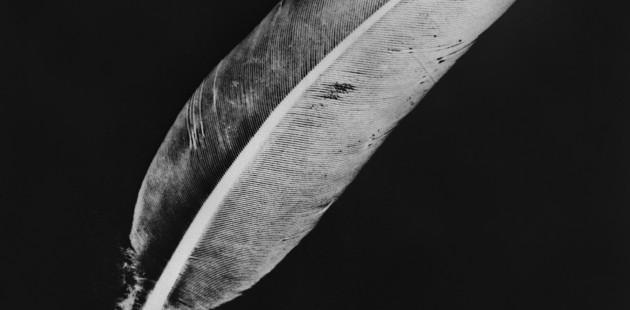 Rayographie, 1947