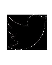 Twitter - La Lune des Pirates